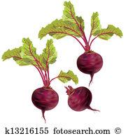 Beets Clip Art EPS Images. 2,534 beets clipart vector.