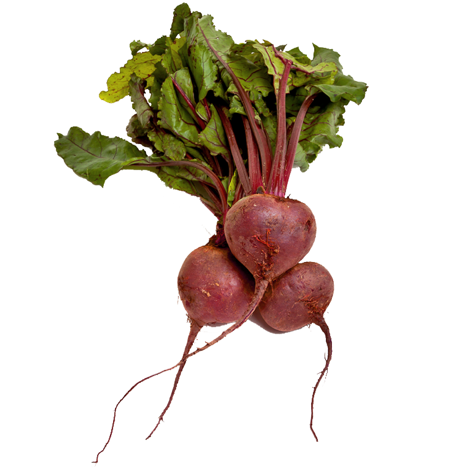 Beet PNG images free download.