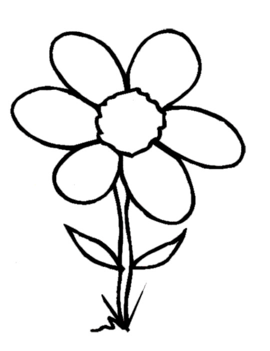 Black And White Flower Clipart Group (+), HD Clipart.