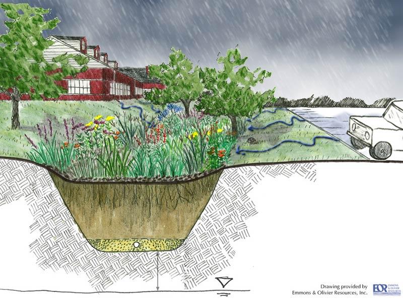 Rain Garden Clipart.
