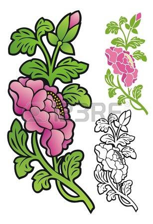 374 Begonia Stock Vector Illustration And Royalty Free Begonia Clipart.