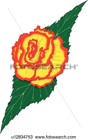 Clipart of Begonia u12834753.