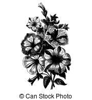 Begonias Clipart Vector Graphics. 26 Begonias EPS clip art vector.