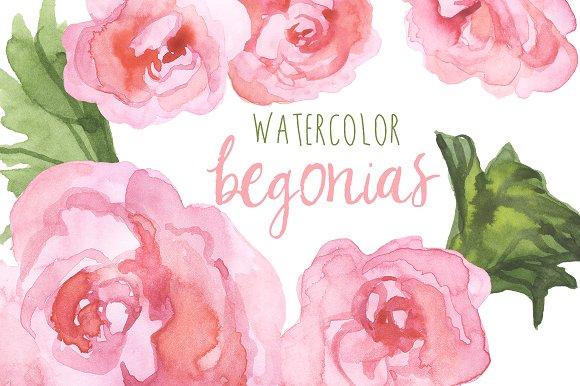 Watercolor Begonias Clip Art ~ Illustrations on Creative Market.