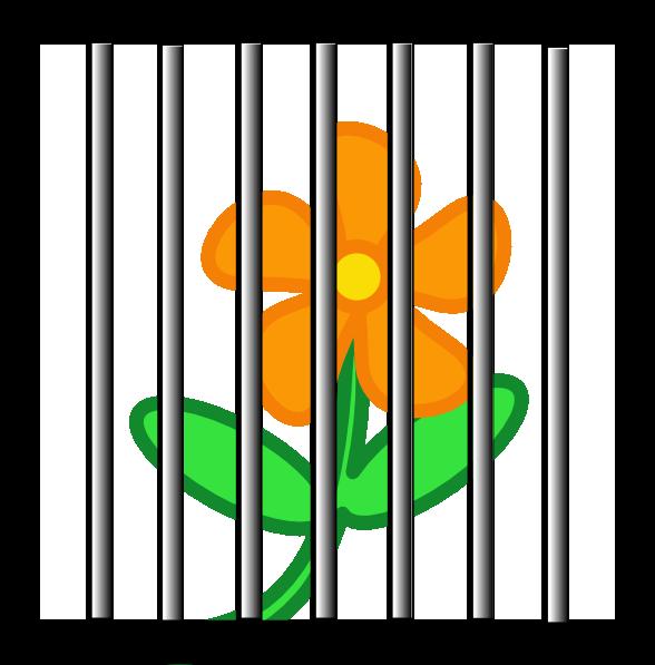 Prison Bar Royalty.