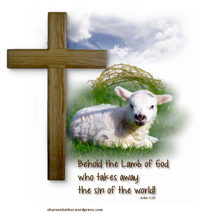 Jesus lamb clipart.