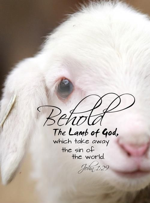 Behold the lamb of god clipart.
