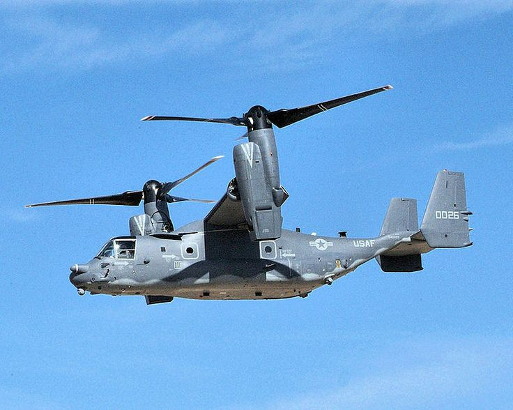 1000+ images about Osprey on Pinterest.