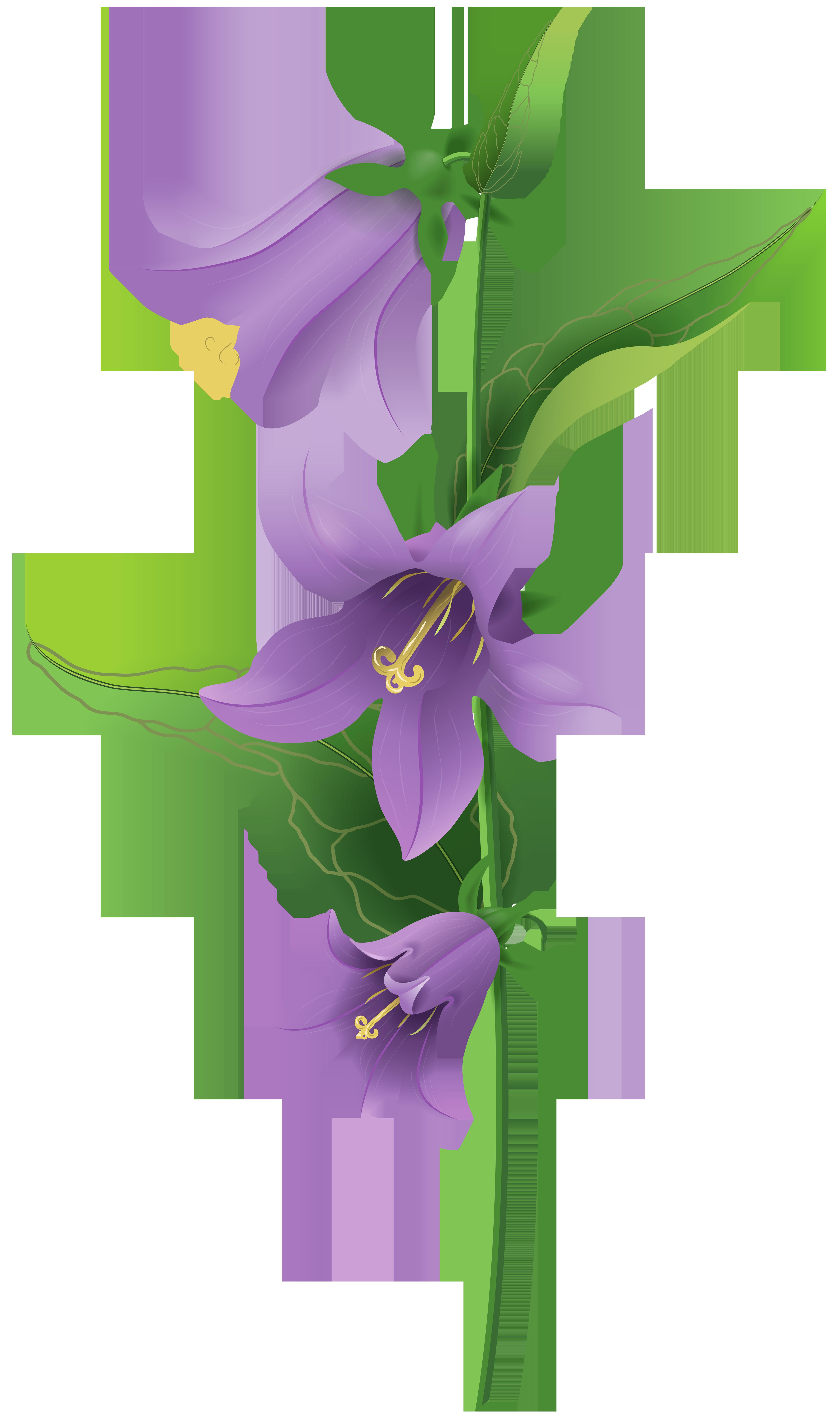 Wild Purple Bell Flower PNG Clip Art Image.