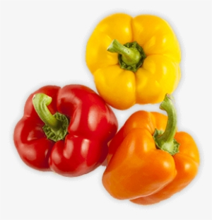 Bell Pepper PNG, Transparent Bell Pepper PNG Image Free Download.