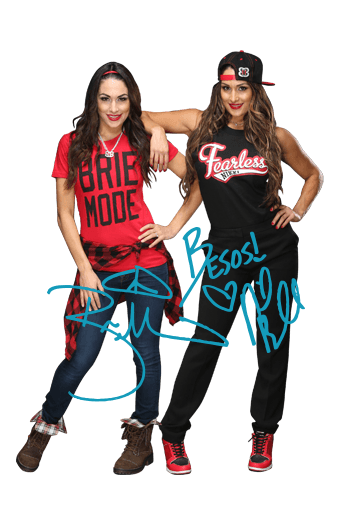 Bella Twins.