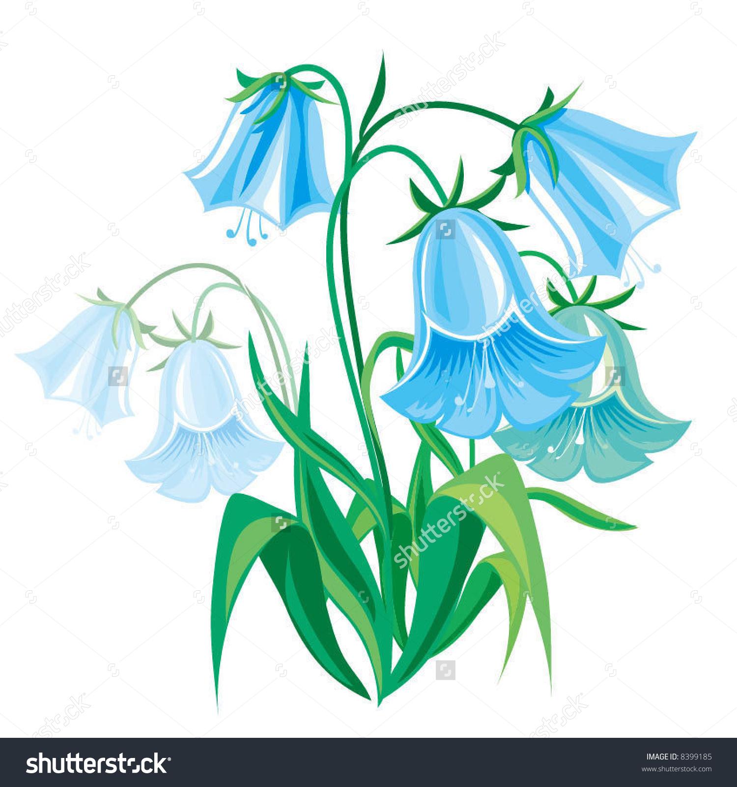Blue Bellflower Stock Vector 8399185.
