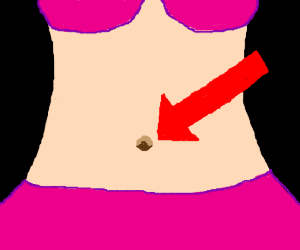 Belly Button Drawing at PaintingValley.com.
