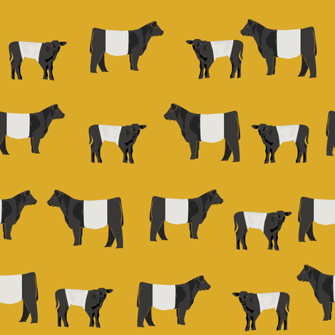 belted galloway fabric, belted galloway cow, cow fabric, cattle.