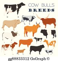 Belted Galloway Clip Art.