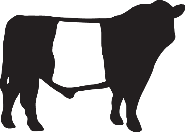 Belted Galloway Decal.
