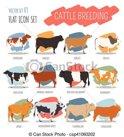 Belted galloway Clipart Vector and Illustration. 10 Belted galloway.