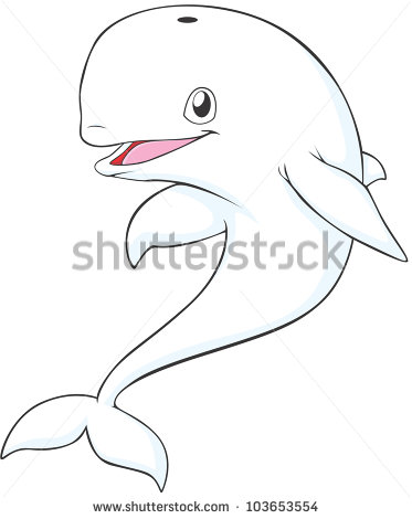 Beluga Whale Stock Photos, Royalty.