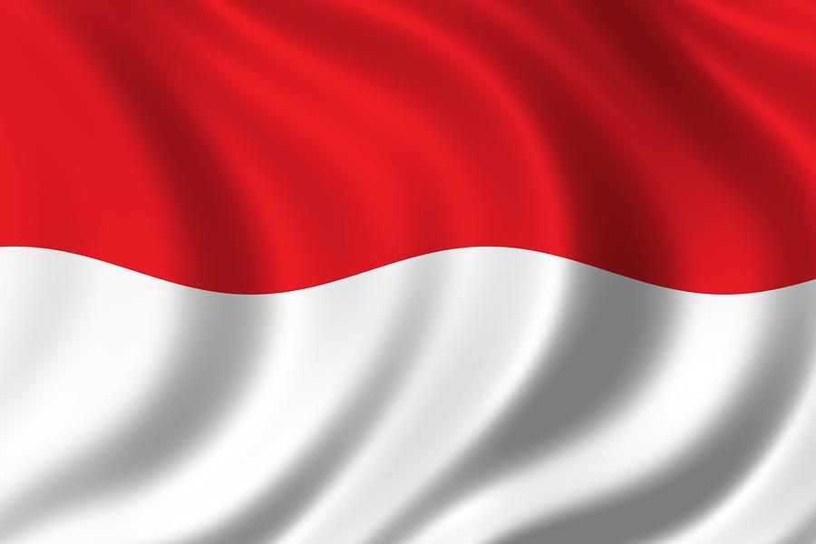 Kenapa Bendera Indonesia Berwarna Merah Putih?.