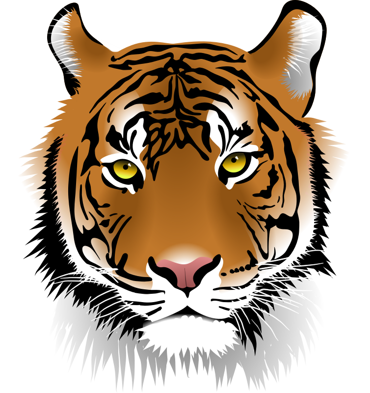Clip Art Tiger & Clip Art Tiger Clip Art Images.