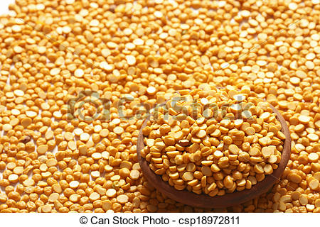 Stock Photography of Bengal Gram a pulse used in many forms across.