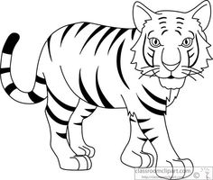 Bengal Tiger Clipart Black And White.