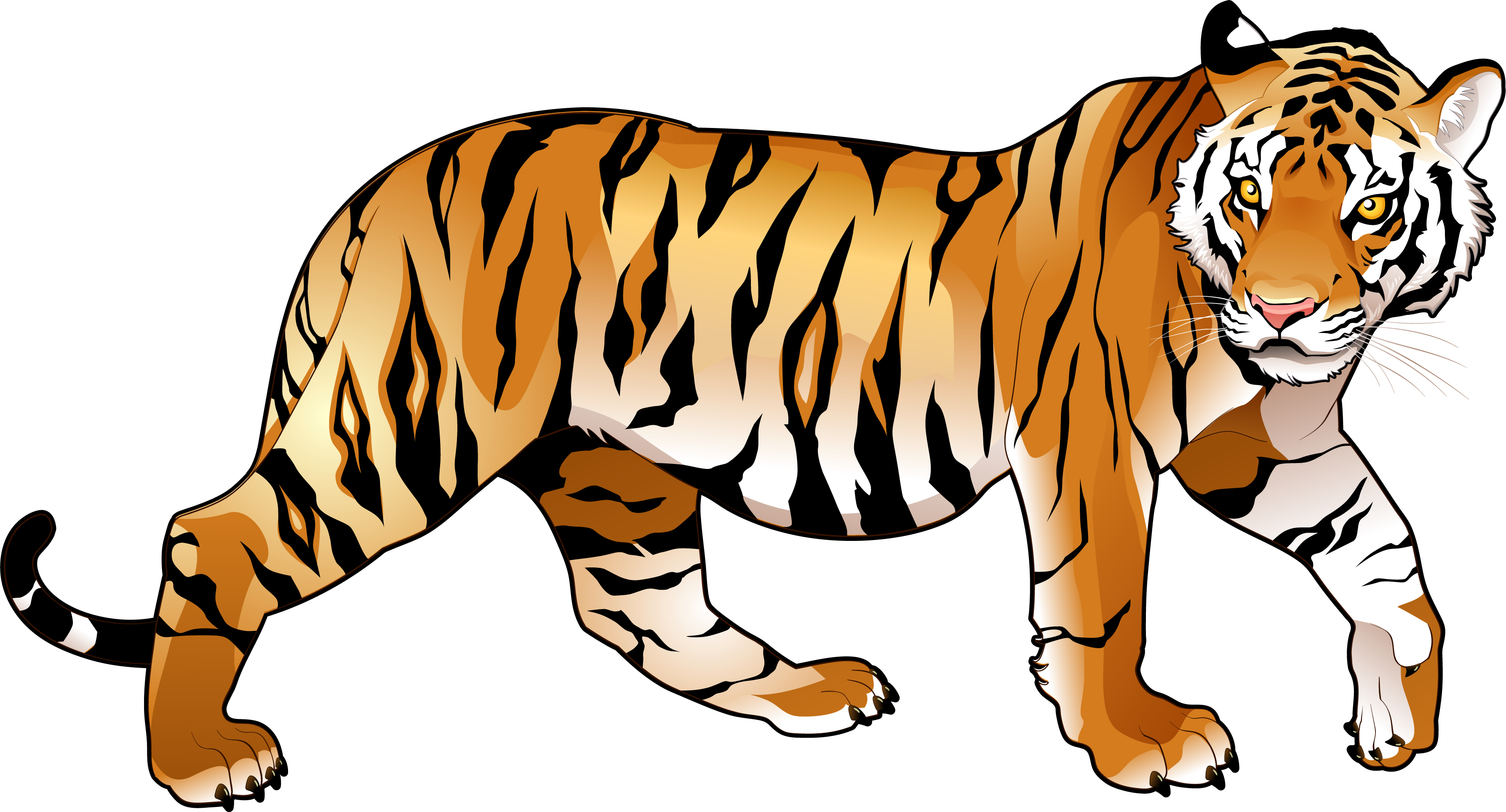 Bengal Tiger Clipart at GetDrawings.com.