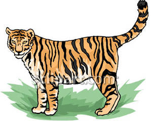 Bengal tiger clipart free.