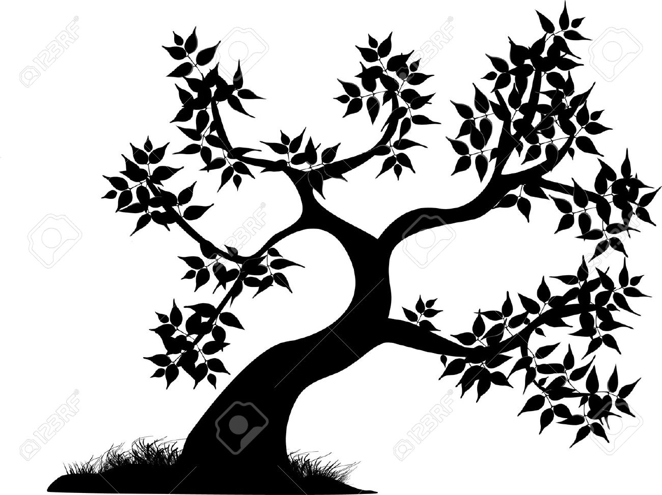 A Single Black Curvey Tree With Leaves Royalty Free Cliparts.