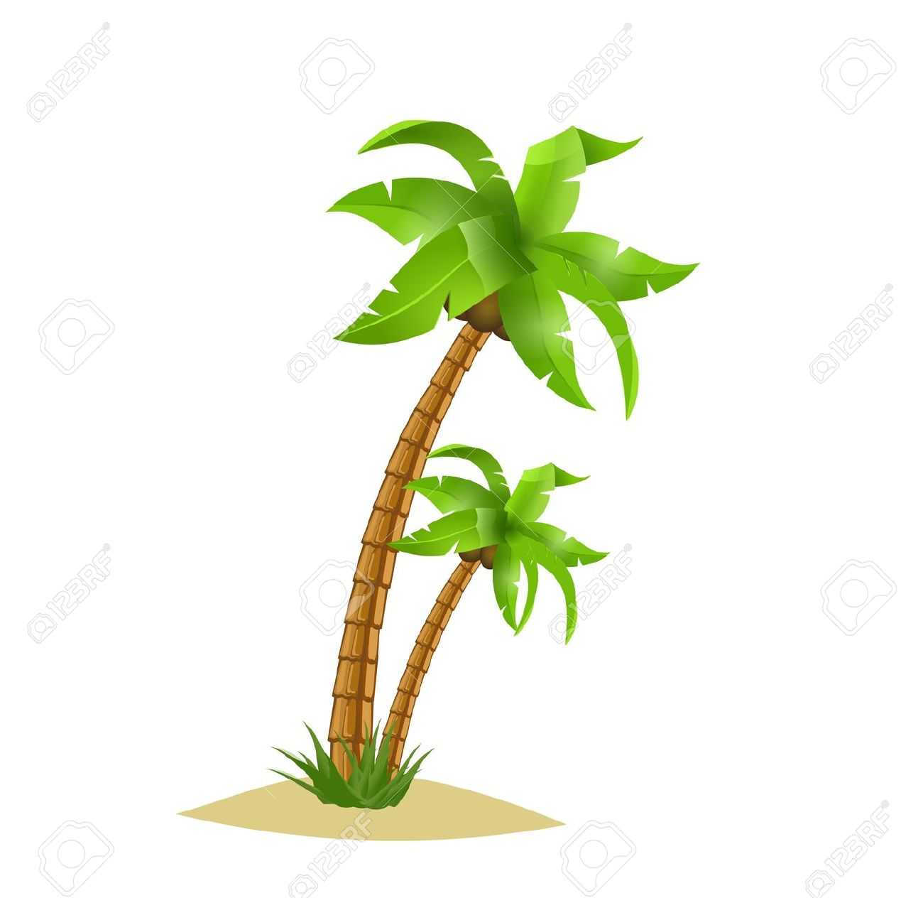Two Bent Palm Trees Isolate On White. Summer Team. Royalty Free.