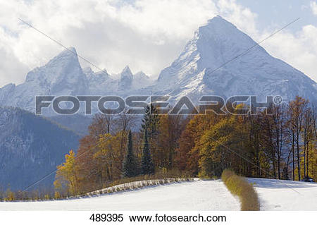 Stock Image of Trees on snowcovered landscape, Mt Watzmann.