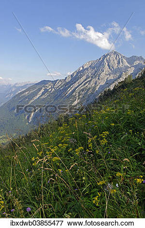 """Picture of """"Route to Purtscheller House on Hohen Goll Mountain."""