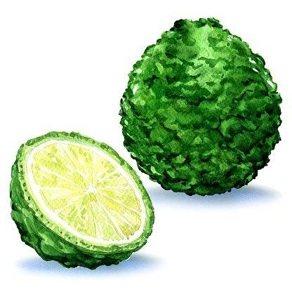 Green fresh bergamot fruit whole and slice, isolated.