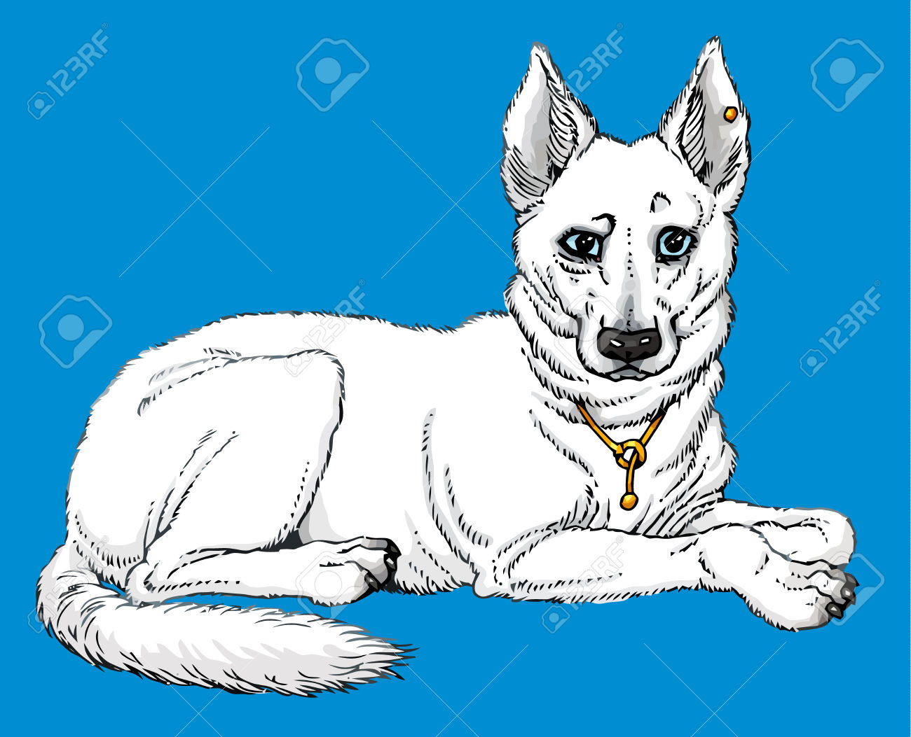 Berger Blanc Suisse Or Swiss White Shepherd Royalty Free Cliparts.