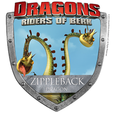 Dragons: Riders of Berk Dragon Badges and a COOL Dreamworks.