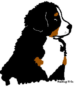 Bernese mountain dog Graphics and Animated Gifs.