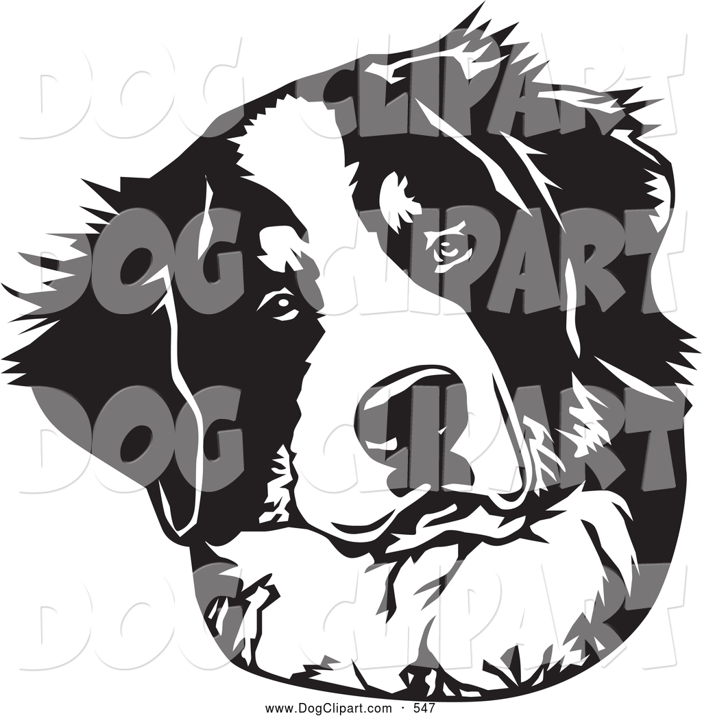 Clip Art of a Cute and Curious Bernese Mountain Dog Tilting His.