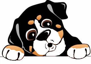 Free bernese mountain dog clip art.