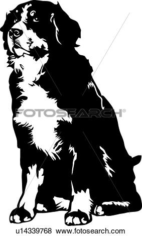 Clip Art of Bernese Mountain Dog01 u14339768.