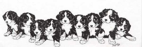 Bernese mountain dog Graphics and Animated Gifs. Bernese mountain dog.