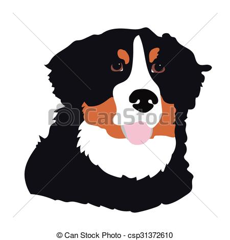 Vector Clip Art of Bernese Mountain Dog.