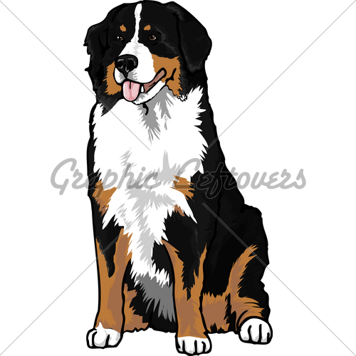 Bernese mountain dog clipart.