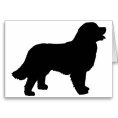 Bernese mountain dog clipart black and white.