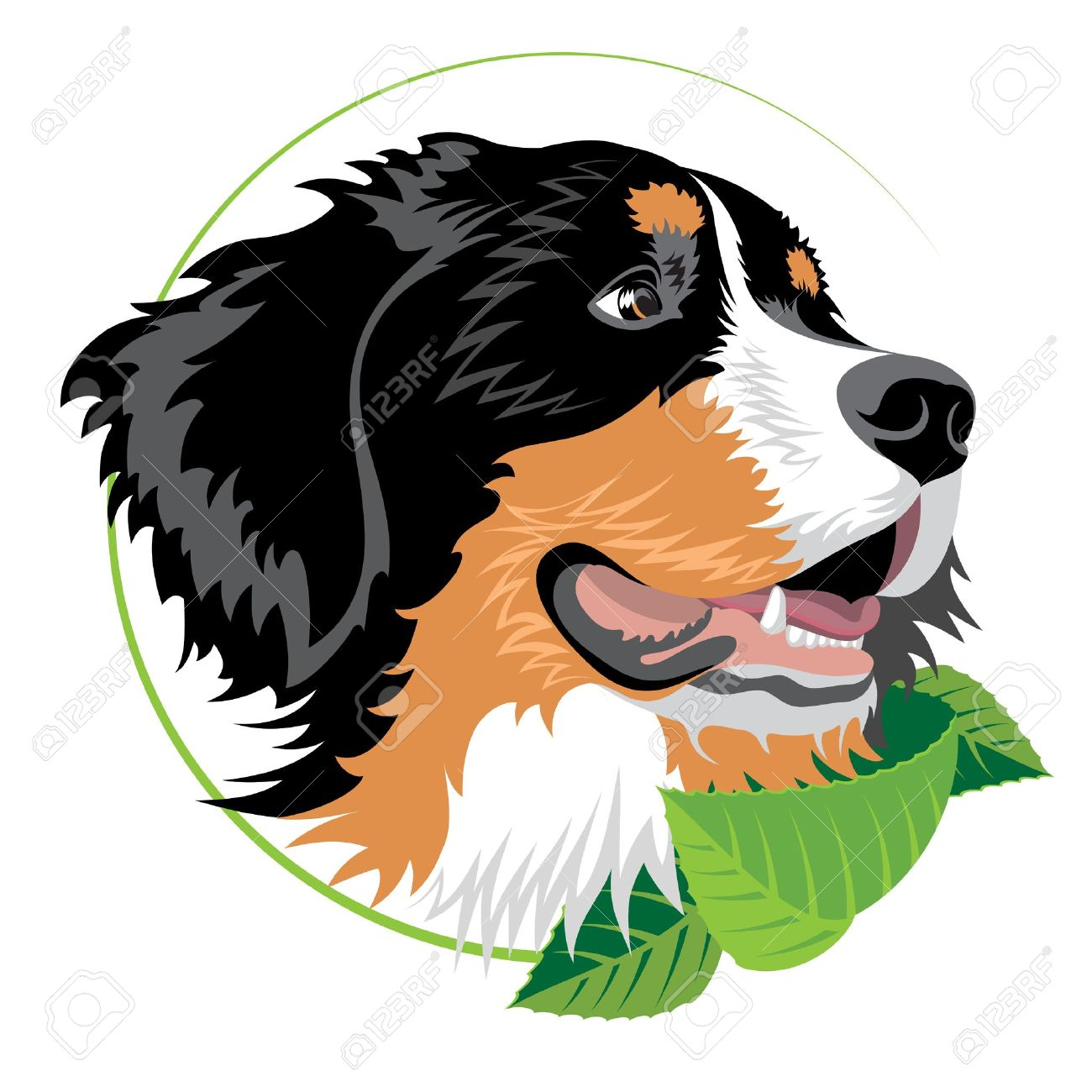 Bernese Mountain Dog With Green Leaves. Illustration Suitable.