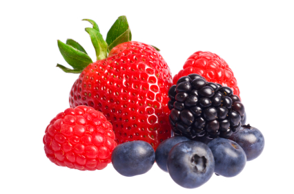 The berries clipart #7