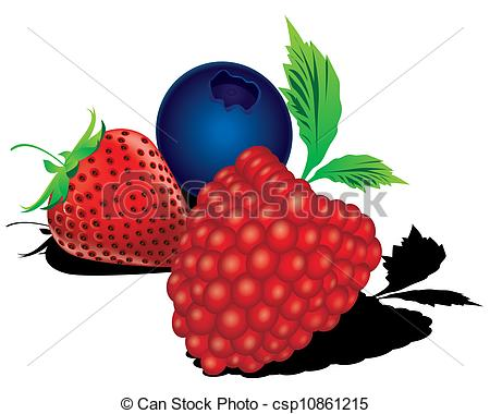 Mixed berries clipart.