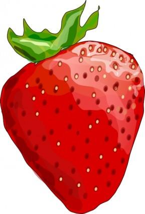 Red Berries Clip Art.