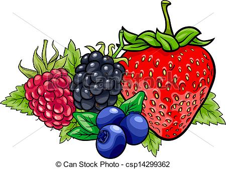 Free berries clipart.