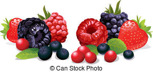 Berries Illustrations and Stock Art. 48,154 Berries illustration.