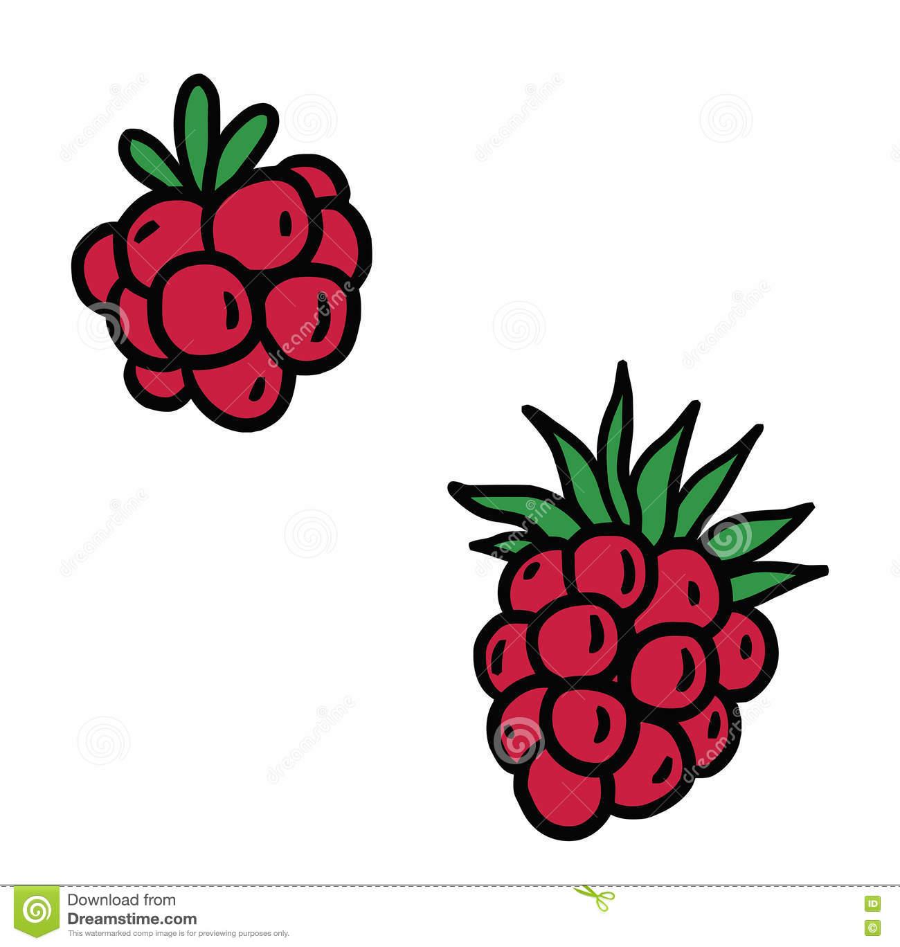 Berries stock illustration. Illustration of fruits, food.